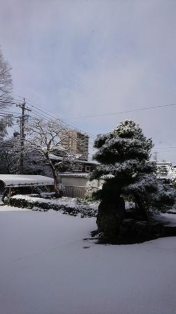 2017jan15_16-001.jpg