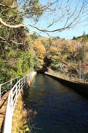 bridge3-006.jpg