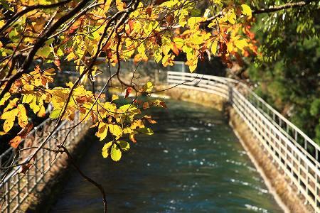 bridge3-009.jpg