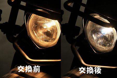 bulb010.jpg